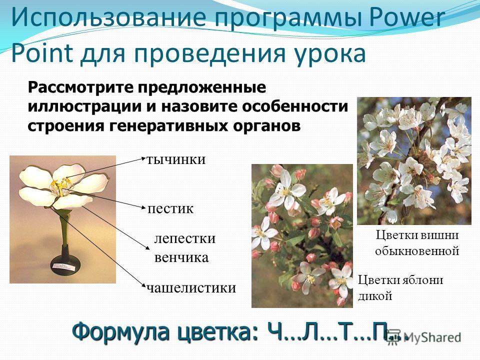 Использование фрагментов электронных изданий Видеофрагменты Анимации сюжетные Интерактивные модели и рисунки Вспомогательные материалы (таблицы, схемы, определения…) Цветные рисунки и фотографии