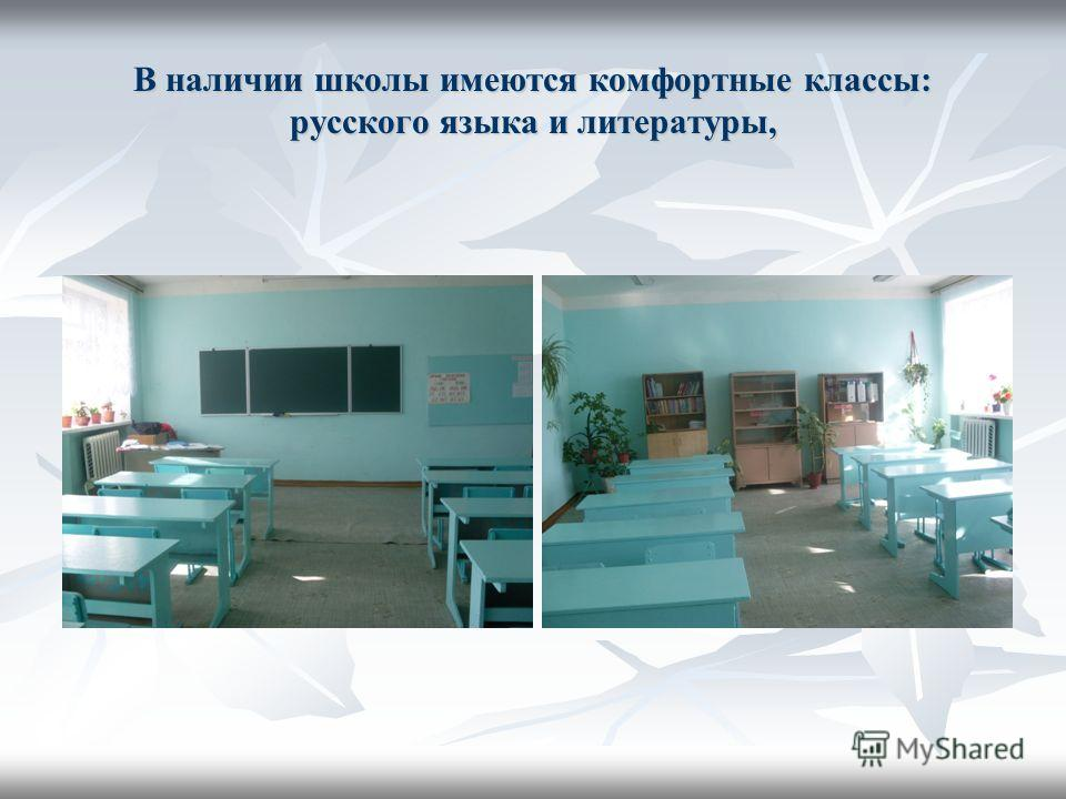 В наличии школы имеются комфортные классы: русского языка и литературы,