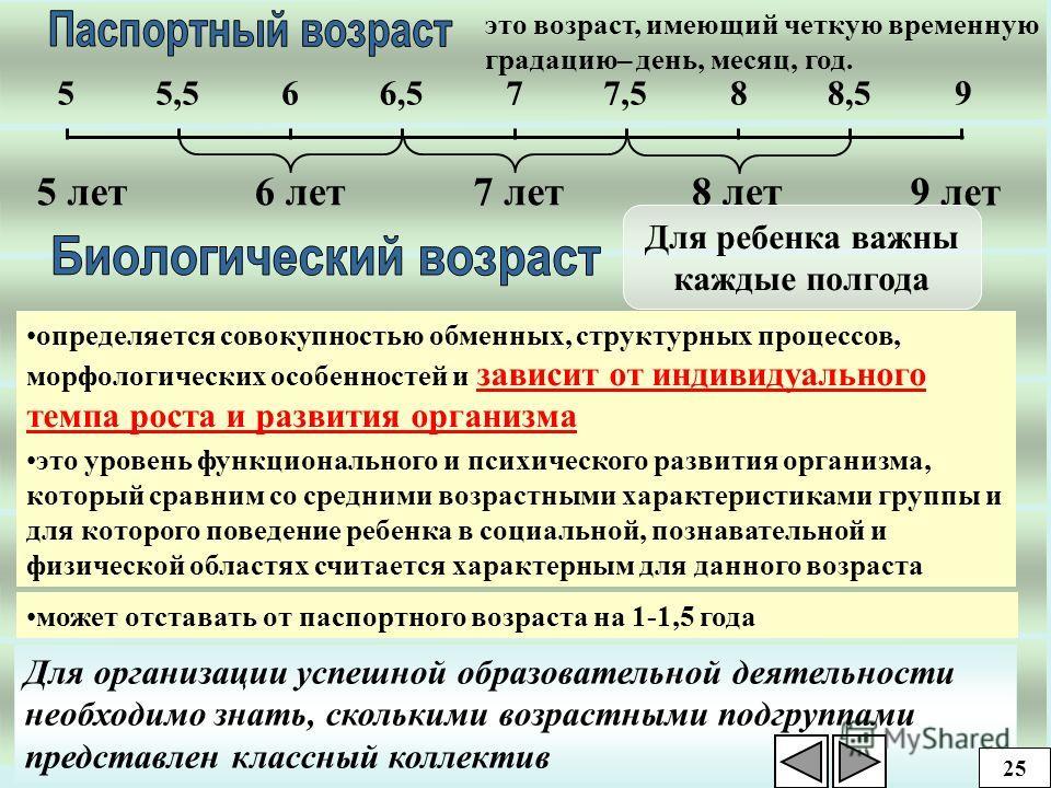 Учет индивидуальных особенностей ребенка Биологический и паспортный возраст Состояние здоровья Темп деятельности Тип восприятия 24