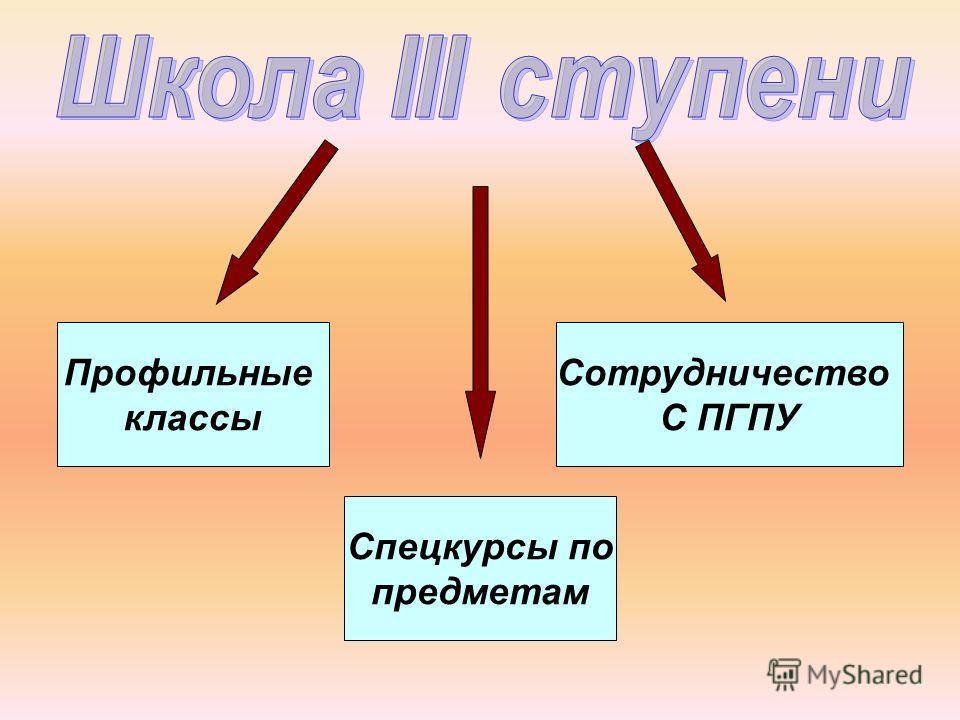 Профильные классы Спецкурсы по предметам Сотрудничество С ПГПУ