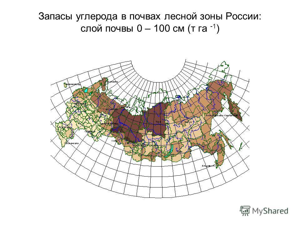 Запасы углерода в почвах лесной зоны России: слой почвы 0 – 100 см (т га -1 )