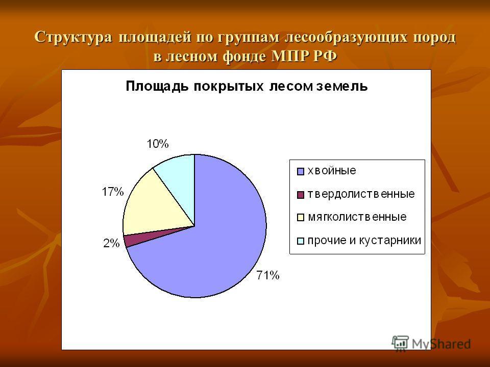 Структура площадей по группам лесообразующих пород в лесном фонде МПР РФ