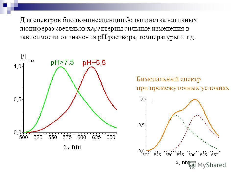 Для спектров биолюминесценции большинства нативных люцифераз светляков характерны сильные изменения в зависимости от значения pH раствора, температуры и т.д. Бимодальный спектр при промежуточных условиях