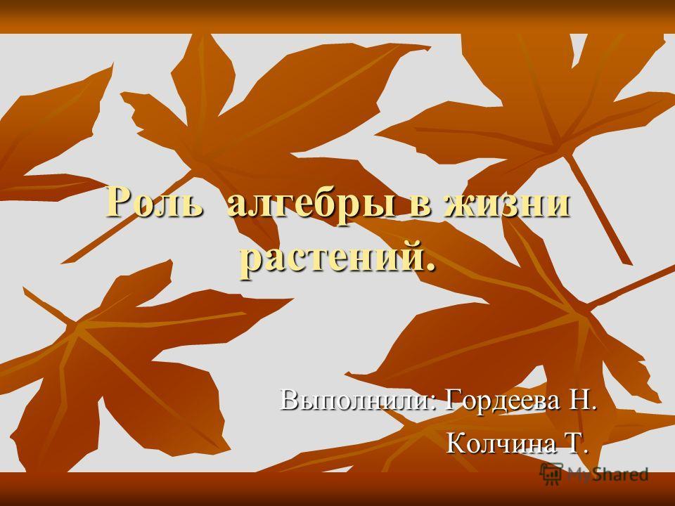 Роль алгебры в жизни растений. Выполнили: Гордеева Н. Колчина Т. Колчина Т.