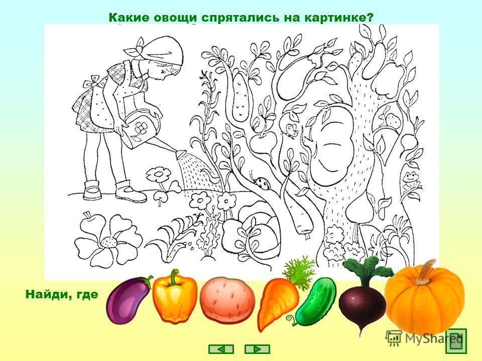 Какие овощи спрятались на картинке? Найди, где
