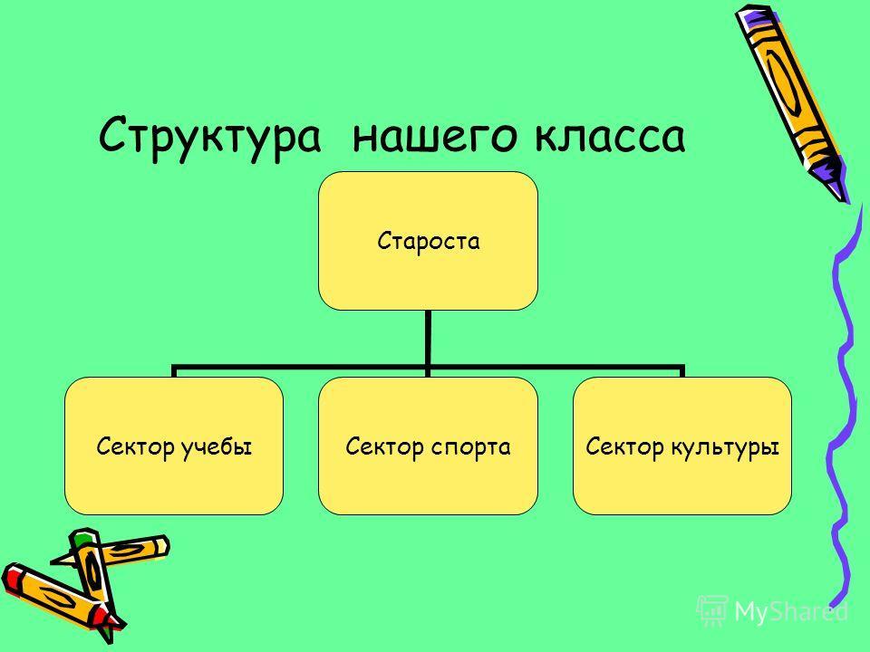 Структура нашего класса Староста Сектор учебы Сектор спорта Сектор культуры