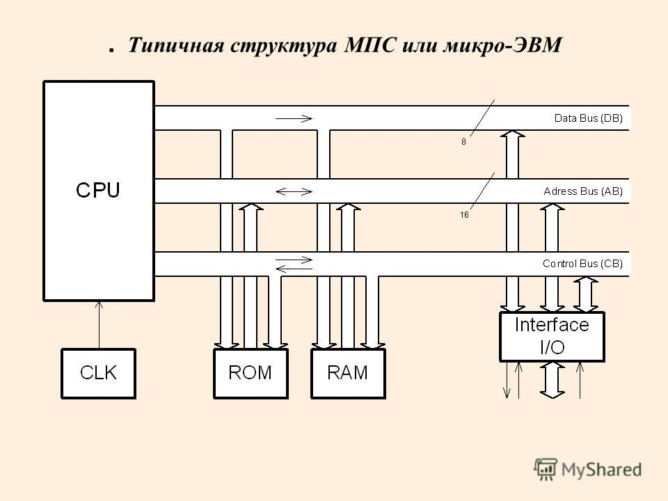 . Типичная структура МПС или микро-ЭВМ