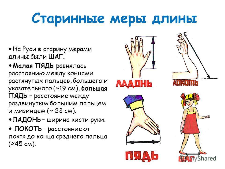 Старинные меры длины На Руси в старину мерами длины были ШАГ. Малая ПЯДЬ равнялась расстоянию между концами растянутых пальцев, большего и указательного (~19 см), большая ПЯДЬ – расстояние между раздвинутым большим пальцем и мизинцем (~ 23 см). ЛАДОН