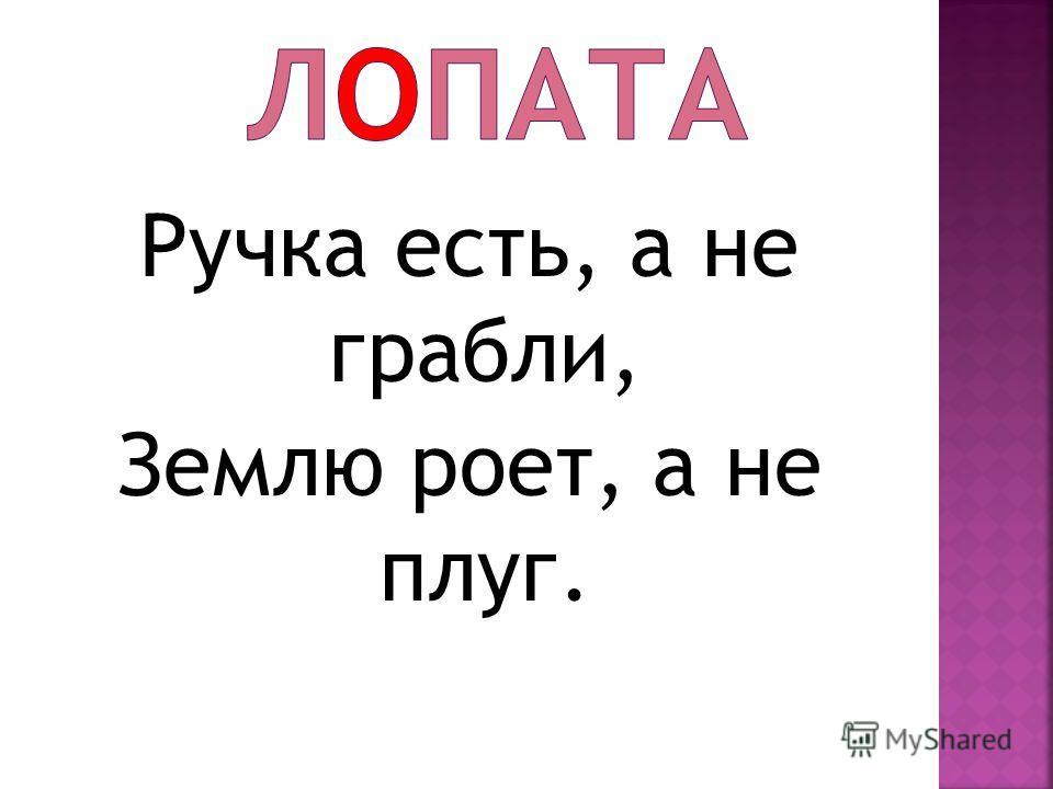Ручка есть, а не грабли, Землю роет, а не плуг.