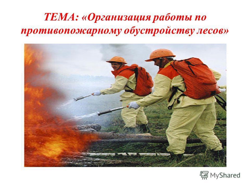 ТЕМА: «Организация работы по противопожарному обустройству лесов»