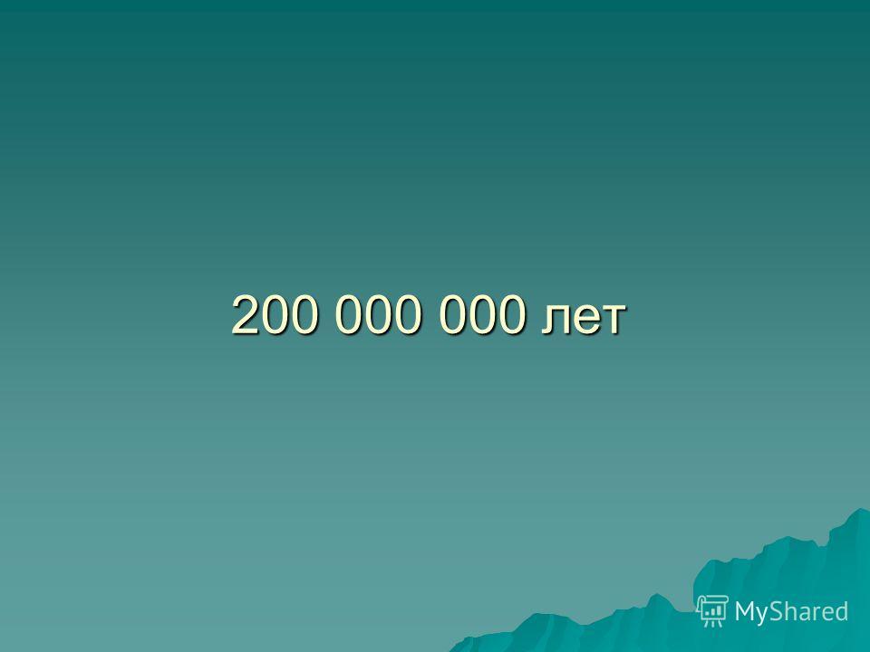 200 000 000 лет