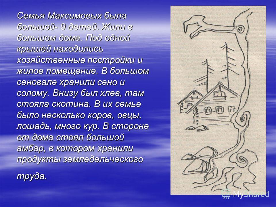 Семья Максимовых была большой- 9 детей. Жили в большом доме. Под одной крышей находились хозяйственные постройки и жилое помещение. В большом сеновале хранили сено и солому. Внизу был хлев, там стояла скотина. В их семье было несколько коров, овцы, л