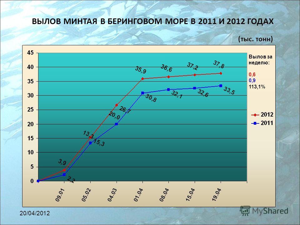 ВЫЛОВ МИНТАЯ В БЕРИНГОВОМ МОРЕ В 2011 И 2012 ГОДАХ (тыс. тонн) Вылов за неделю: 0,6 0,9 113,1% 20/04/2012