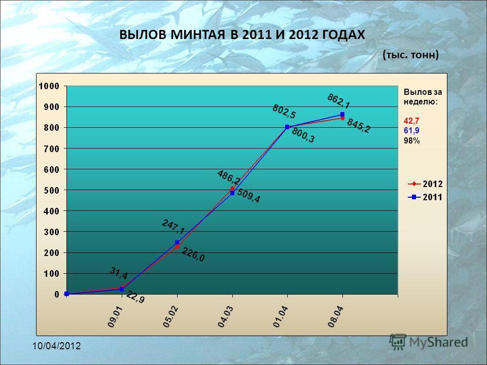 ВЫЛОВ МИНТАЯ В 2011 И 2012 ГОДАХ (тыс. тонн) Вылов за неделю: 42,7 61,9 98% 10/04/2012
