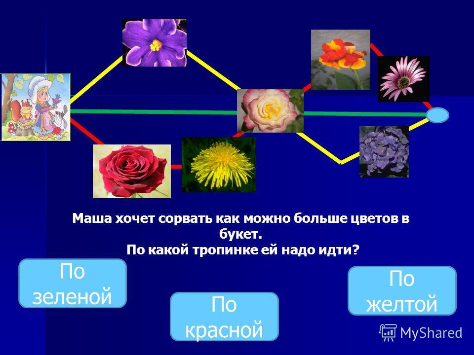 Маша хочет сорвать как можно больше цветов в букет. По какой тропинке ей надо идти? По зеленой По красной По желтой