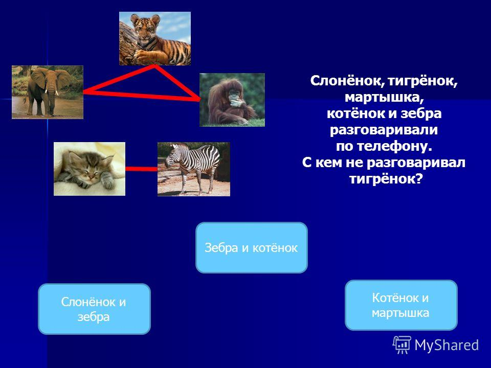 Слонёнок, тигрёнок, мартышка, котёнок и зебра разговаривали по телефону. С кем не разговаривал тигрёнок? Слонёнок и зебра Зебра и котёнок Котёнок и мартышка