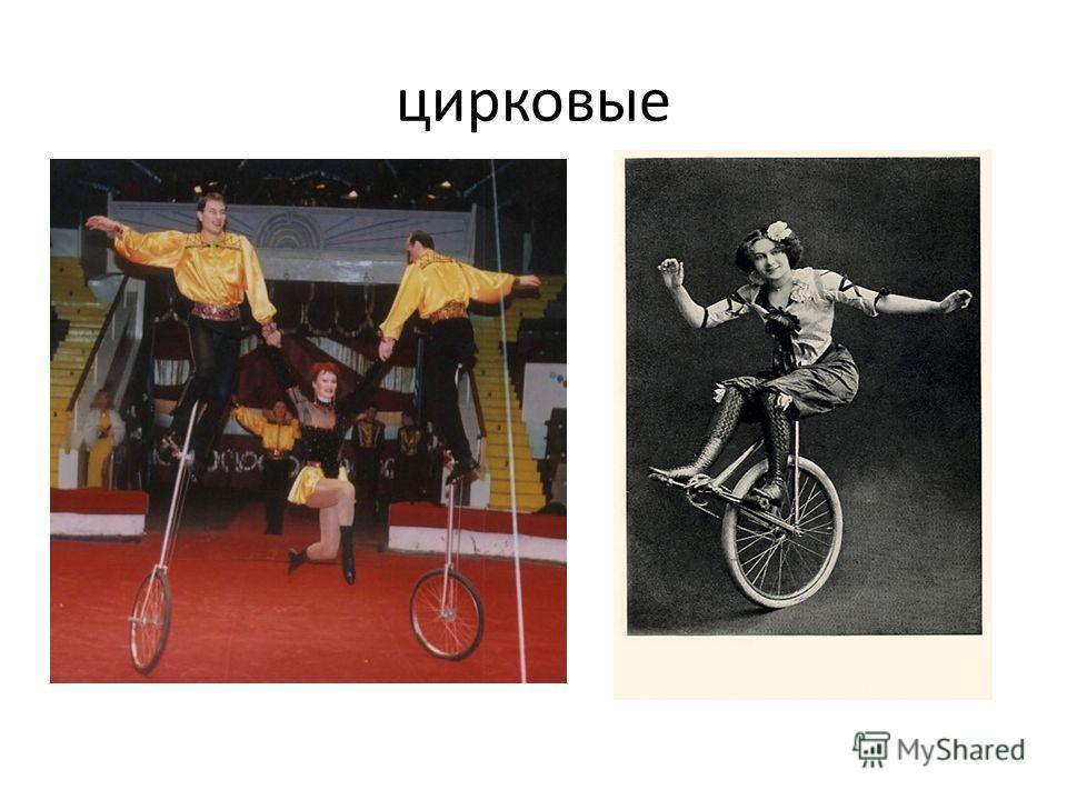 цирковые