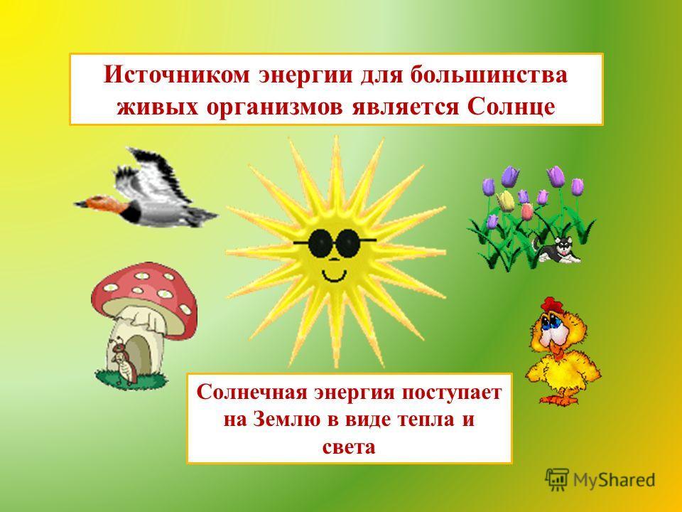 Источником энергии для большинства живых организмов является Солнце Солнечная энергия поступает на Землю в виде тепла и света