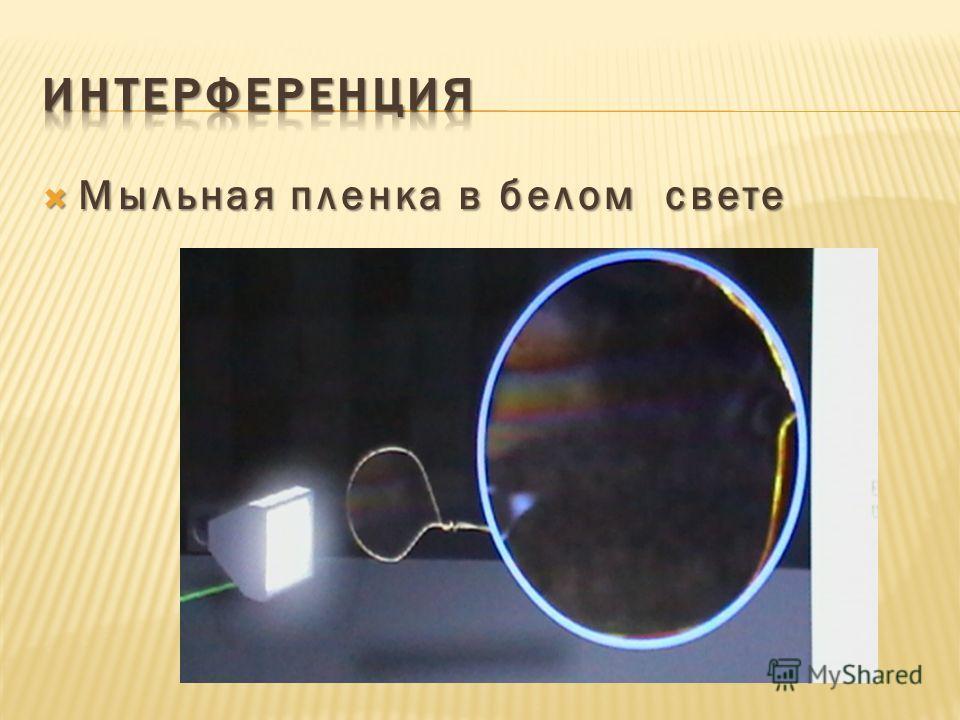 Мыльная пленка в белом свете Мыльная пленка в белом свете