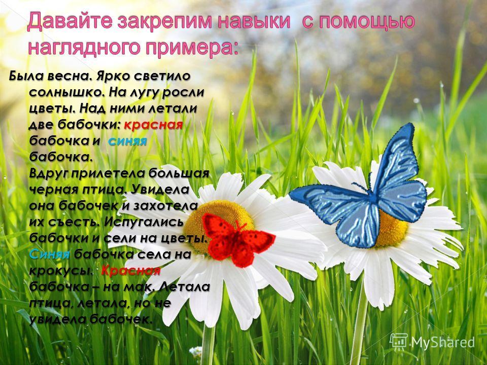 Была весна. Ярко светило солнышко. На лугу росли цветы. Над ними летали две бабочки: красная бабочка и синяя бабочка. Вдруг прилетела большая черная птица. Увидела она бабочек и захотела их съесть. Испугались бабочки и сели на цветы. Синяя бабочка се