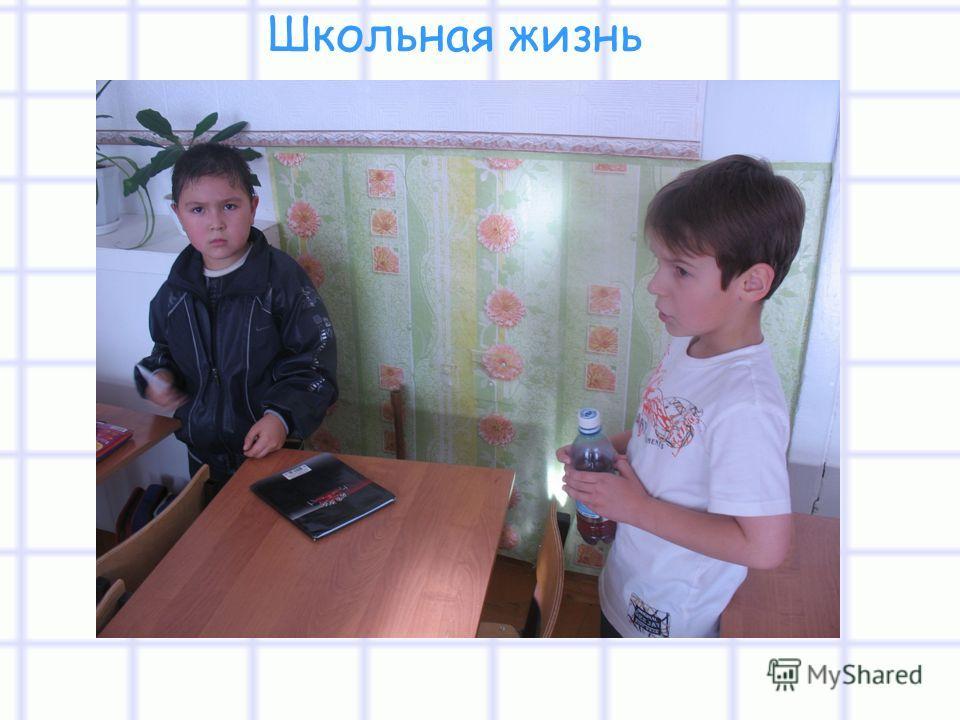 Школьная жизнь