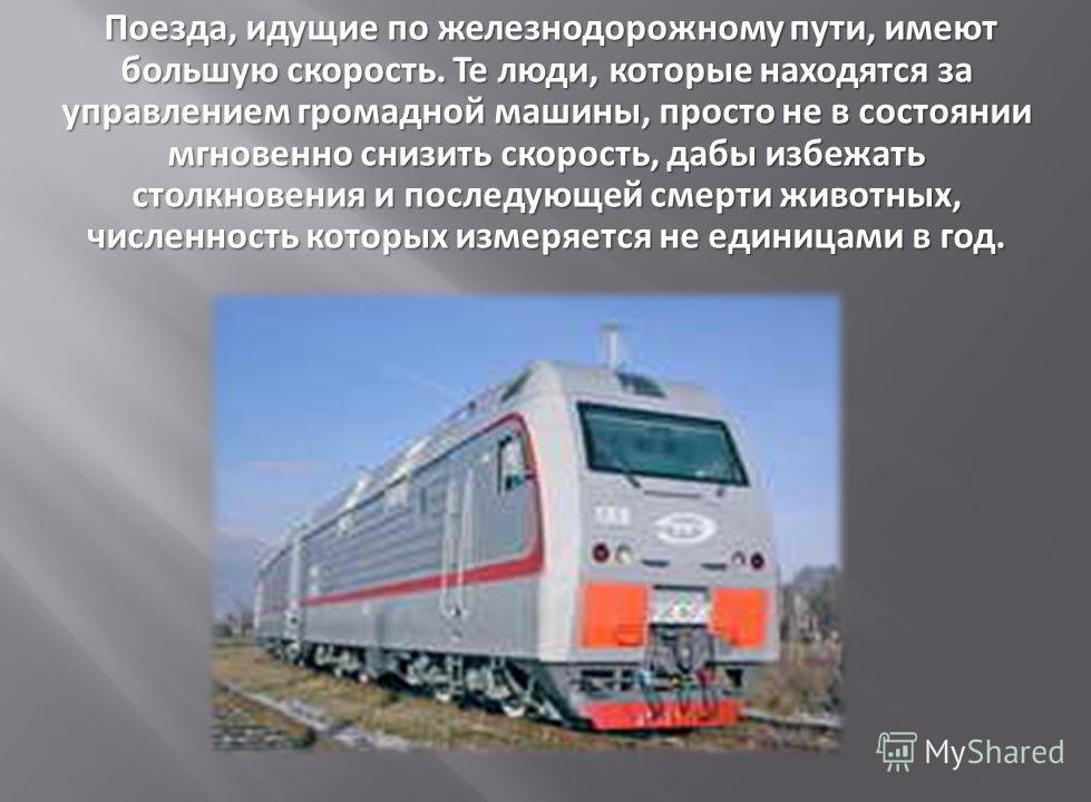 Поезда, идущие по железнодорожному пути, имеют большую скорость. Те люди, которые находятся за управлением громадной машины, просто не в состоянии мгновенно снизить скорость, дабы избежать столкновения и последующей смерти животных, численность котор