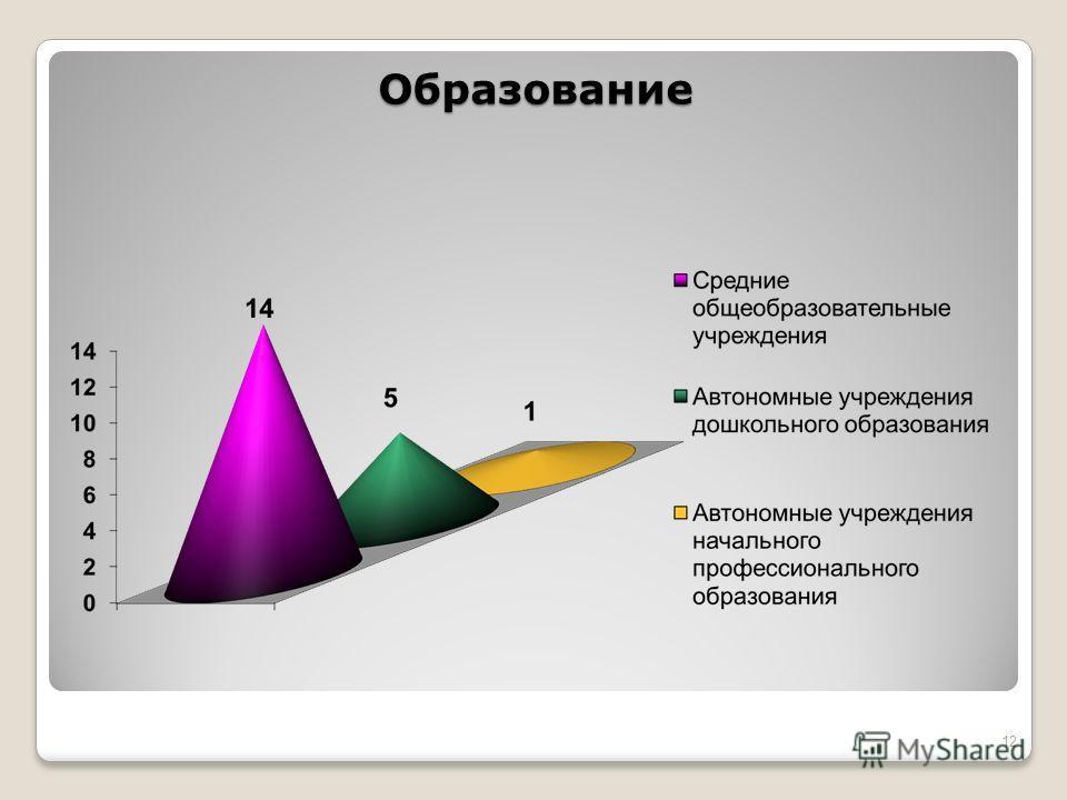 Образование 12