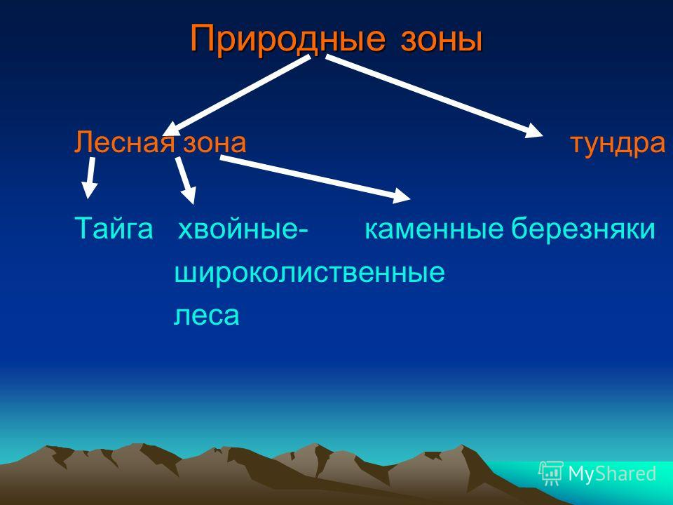 Природные зоны Лесная зона тундра Тайга хвойные- каменные березняки широколиственные леса