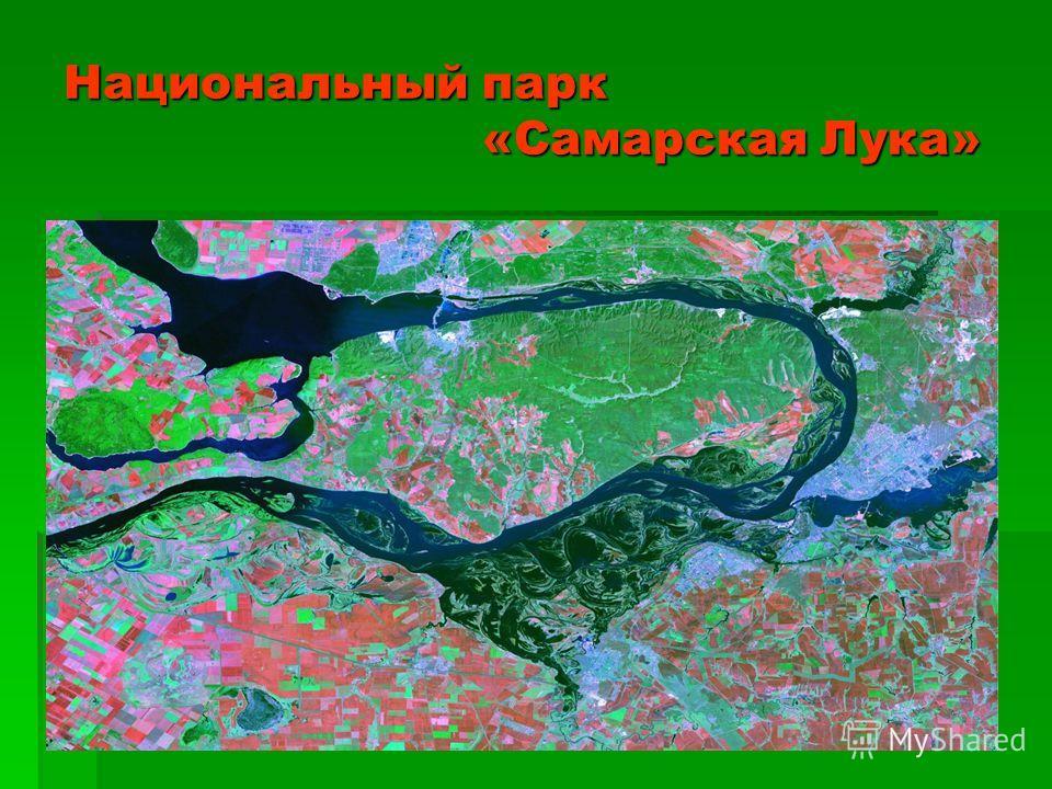 Национальный парк «Самарская Лука»