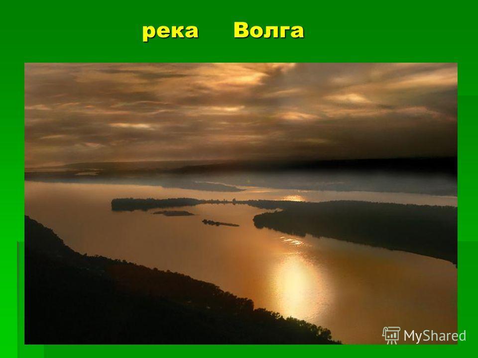 река Волга река Волга