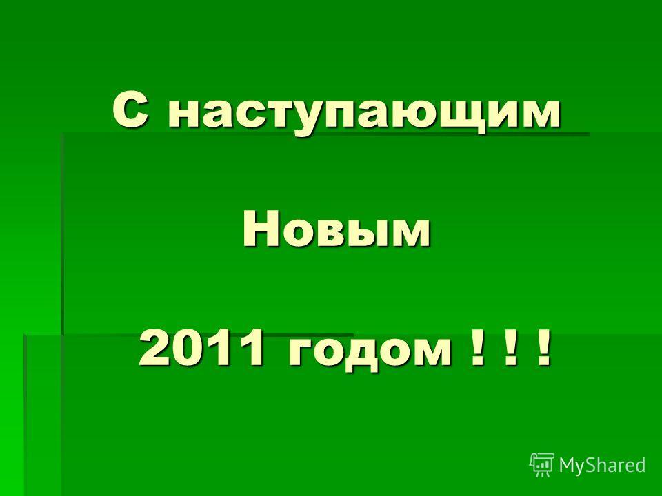 С наступающим Новым 2011 годом ! ! !