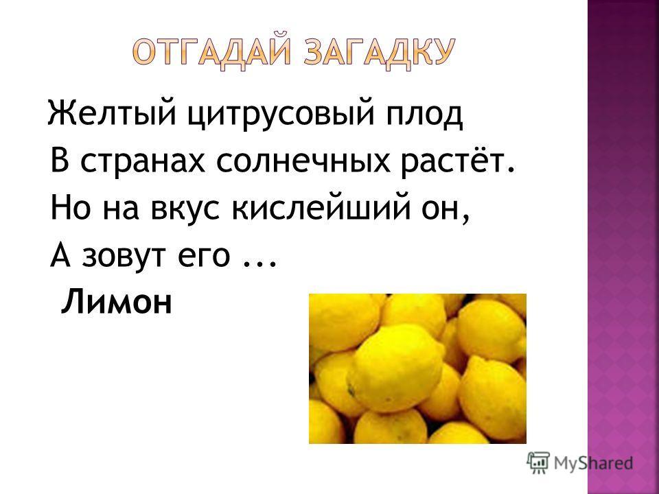 Желтый цитрусовый плод В странах солнечных растёт. Но на вкус кислейший он, А зовут его... Лимон