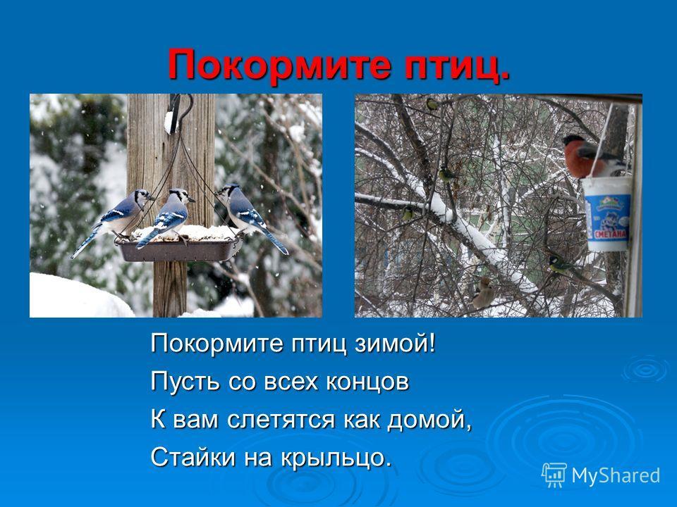Покормите птиц. Покормите птиц зимой! Покормите птиц зимой! Пусть со всех концов Пусть со всех концов К вам слетятся как домой, К вам слетятся как домой, Стайки на крыльцо. Стайки на крыльцо.