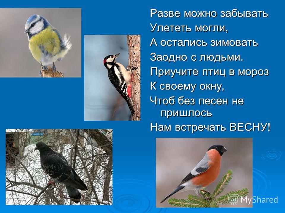 Разве можно забывать Улететь могли, А остались зимовать Заодно с людьми. Приучите птиц в мороз К своему окну, Чтоб без песен не пришлось Нам встречать ВЕСНУ!