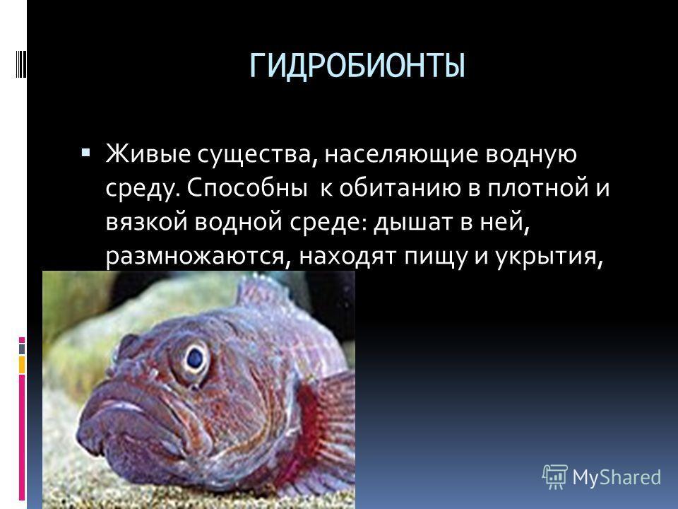 ГИДРОБИОНТЫ Живые существа, населяющие водную среду. Способны к обитанию в плотной и вязкой водной среде: дышат в ней, размножаются, находят пищу и укрытия, передвигаются.