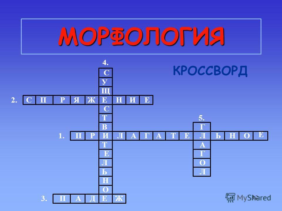 12 МОРФОЛОГИЯ КРОССВОРД