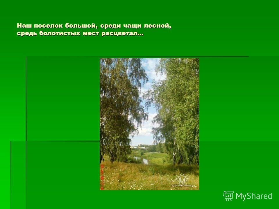 Наш поселок большой, среди чащи лесной, средь болотистых мест расцветал…