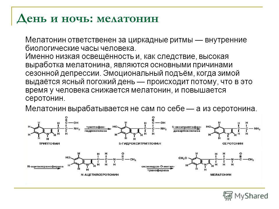 День и ночь: мелатонин Мелатонин ответственен за циркадные ритмы внутренние биологические часы человека. Именно низкая освещённость и, как следствие, высокая выработка мелатонина, являются основными причинами сезонной депрессии. Эмоциональный подъём,