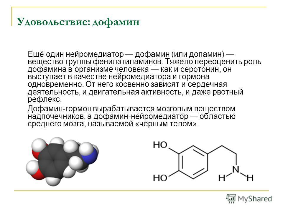 Удовольствие: дофамин Ещё один нейромедиатор дофамин (или допамин) вещество группы фенилэтиламинов. Тяжело переоценить роль дофамина в организме человека как и серотонин, он выступает в качестве нейромедиатора и гормона одновременно. От него косвенно