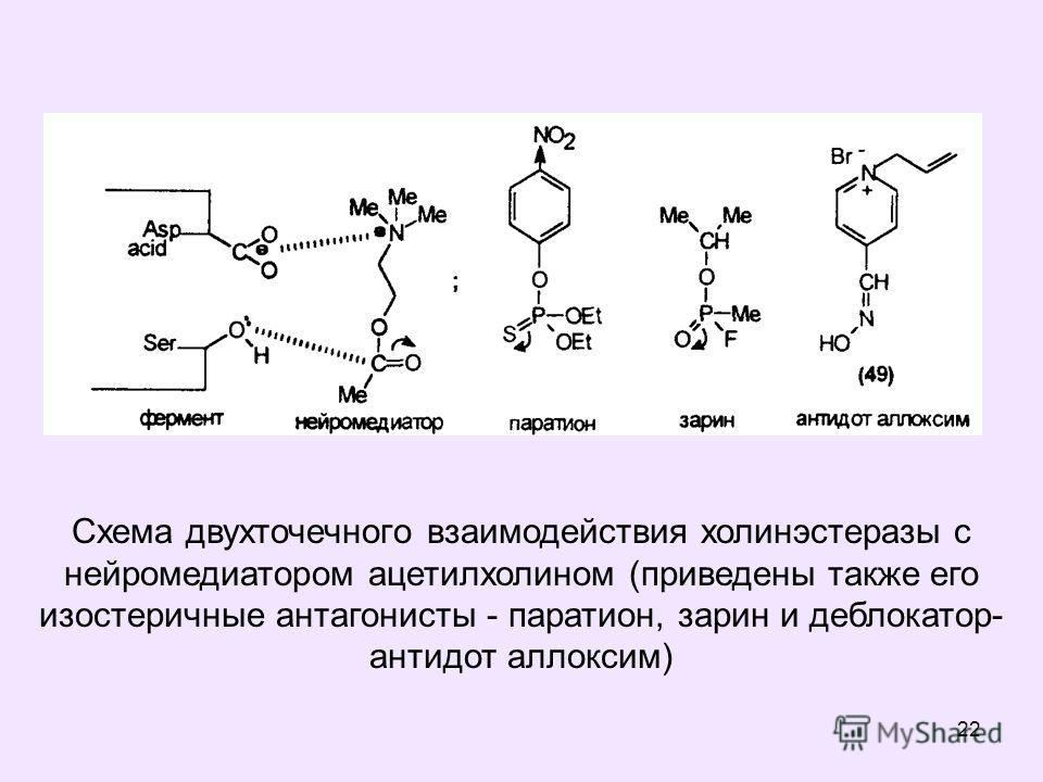 22 Схема двухточечного взаимодействия холинэстеразы с нейромедиатором ацетилхолином (приведены также его изостеричные антагонисты - паратион, зарин и деблокатор- антидот аллоксим)