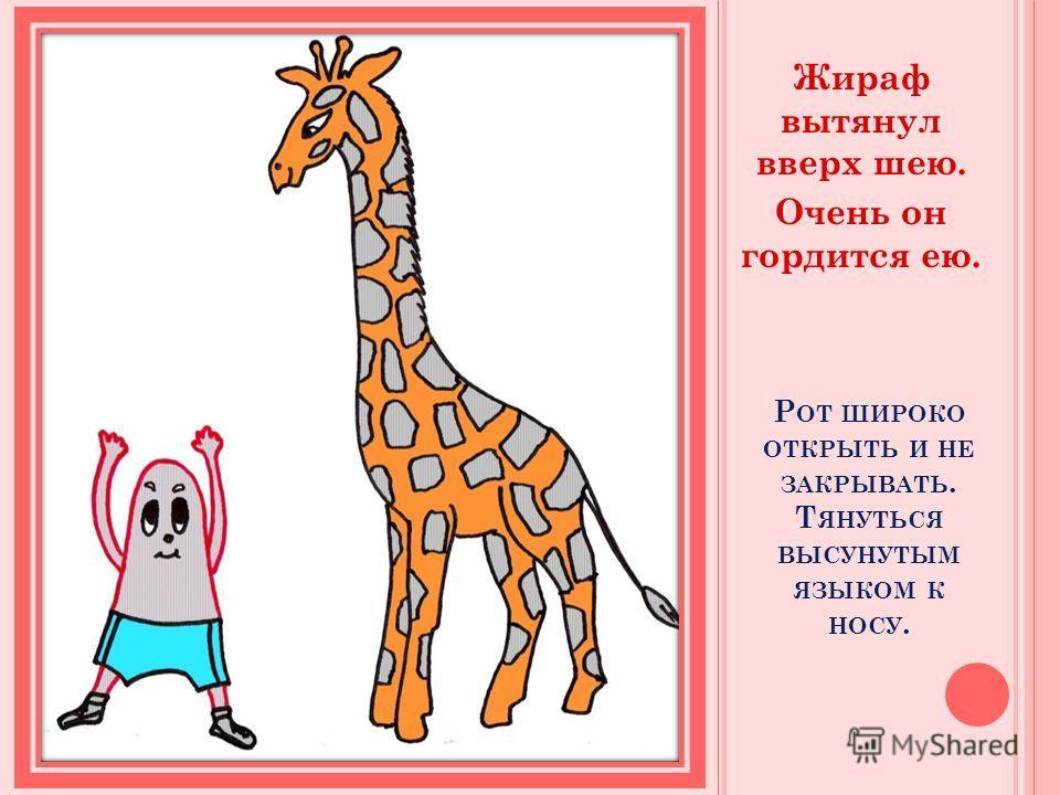 Р ОТ ШИРОКО ОТКРЫТЬ И НЕ ЗАКРЫВАТЬ. Т ЯНУТЬСЯ ВЫСУНУТЫМ ЯЗЫКОМ К НОСУ. Жираф вытянул вверх шею. Очень он гордится ею.