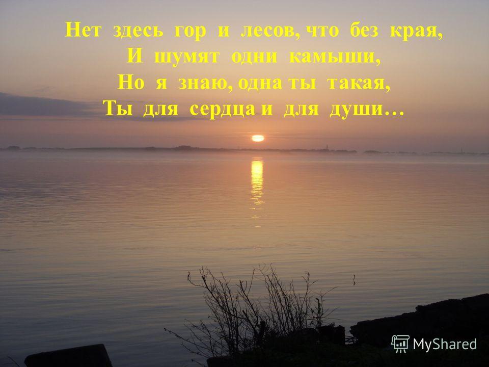 Нет здесь гор и лесов, что без края, И шумят одни камыши, Но я знаю, одна ты такая, Ты для сердца и для души…