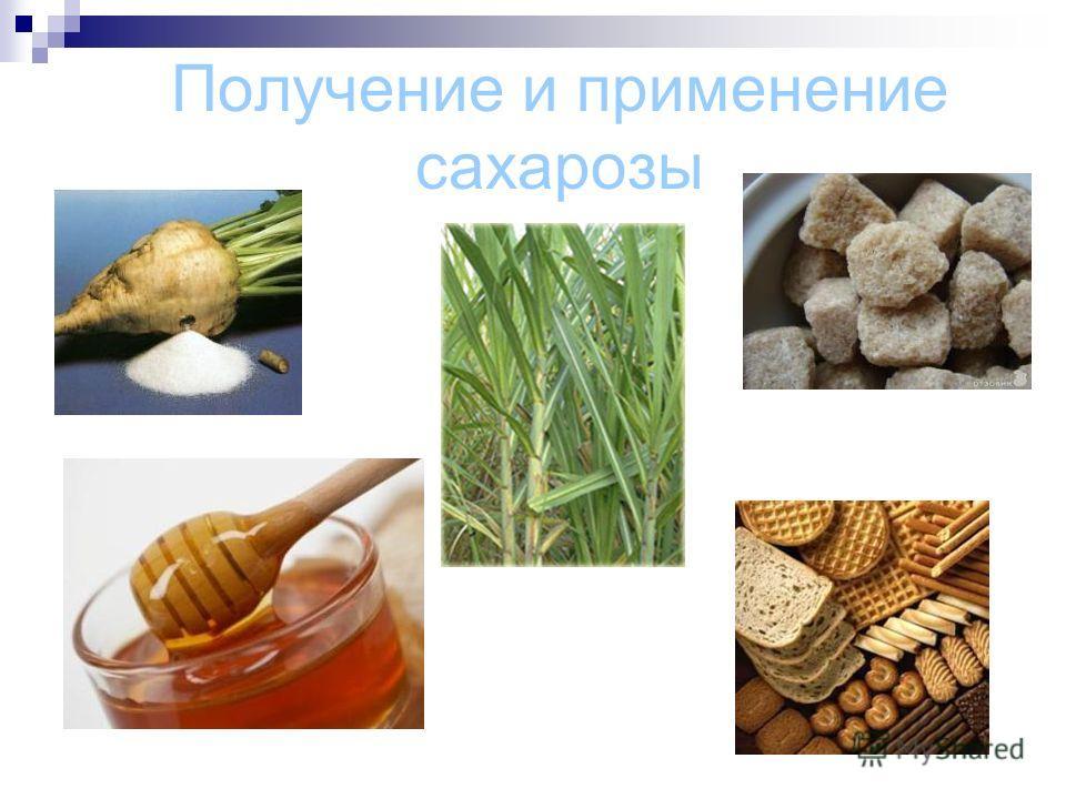 Получение и применение сахарозы
