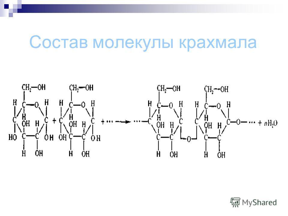 Состав молекулы крахмала