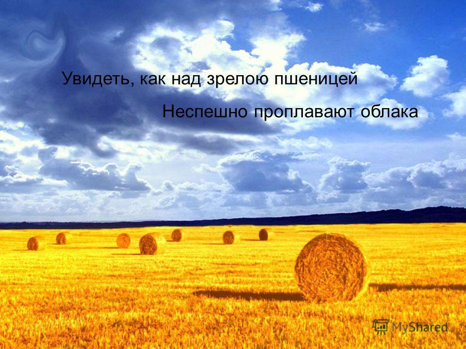 Увидеть, как над зрелою пшеницей Неспешно проплавают облака.