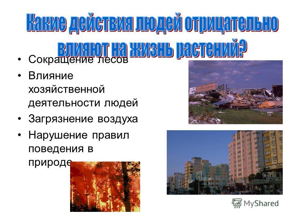 Сокращение лесов Влияние хозяйственной деятельности людей Загрязнение воздуха Нарушение правил поведения в природе