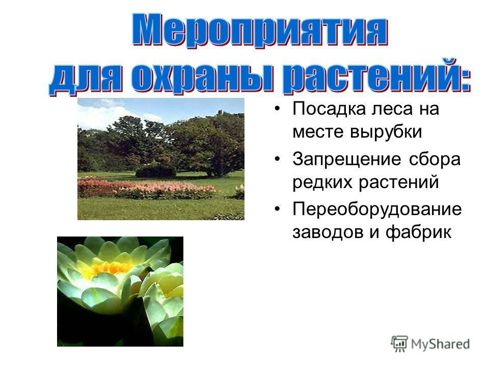 Посадка леса на месте вырубки Запрещение сбора редких растений Переоборудование заводов и фабрик
