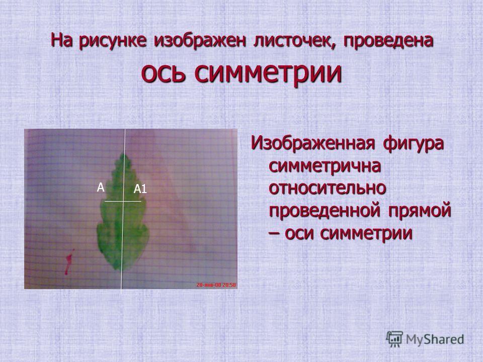 На рисунке изображен листочек, проведена ось симметрии Изображенная фигура симметрична относительно проведенной прямой – оси симметрии А А1
