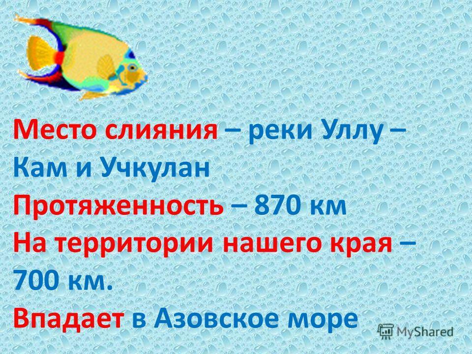 Место слияния – реки Уллу – Кам и Учкулан Протяженность – 870 км На территории нашего края – 700 км. Впадает в Азовское море