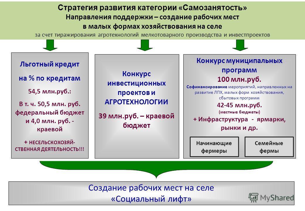 Конкурс муниципальных программ 100 млн.руб. Софинансирование мероприятий, направленных на развитие ЛПХ, малых форм хозяйствования, сбытовых программ 42-45 млн.руб. (местные бюджеты) + Инфраструктура - ярмарки, рынки и др. Создание рабочих мест на сел